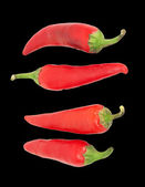 Four red chilly peppers isolated on white background — Stock Photo