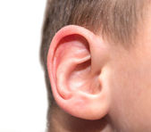 Ear men. macro — Stock fotografie