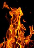 Vlammen van brand op een zwarte achtergrond — Stockfoto