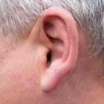 Male ear. macro — Stockfoto