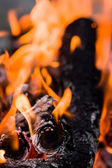 Fire flames on a black background — Stock Photo