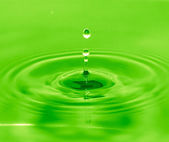 A drop of water falls into the green water — Stock Photo