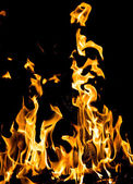 Abstract background. fire flames on a black background — Stock Photo