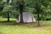 Tent in the woods — Stock Photo