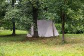 在树林里的帐篷 — 图库照片