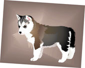 Small puppy of a dog of breed Siberian Huskies — Stock Vector