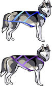 And cargo sled rides - harness for sled dogs — Vector de stock