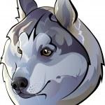 Huskies — Stock Vector #37733215