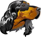 Dog breed Scottish setter — Stock Vector