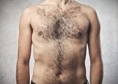 浓密的胸毛 — 图库照片