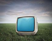 TV in a Grace Field — Stock Photo