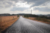 Country Bumpy Road — Stock Photo