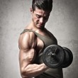 Muscles — Stock Photo #16266041