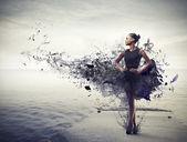 černá kráska — Stock fotografie
