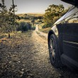 Foto de Stock  : Car on path