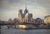 View of Notre Dame — Stockfoto