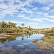 Постер, плакат: Oasis at the Draa River with cloudy blue sky reflected in the wa