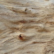 Driftwood Background - Stock Photo