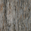 Grungy Wood — Stock Photo