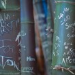 Stock Photo: Graffiti Bamboo