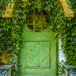 Fairytale Cottage Door — Stock Photo