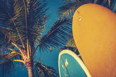 Vintage Surfboards And Palms — Stock Photo