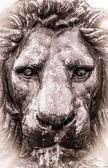 Aged Style Photo Of Lion Statue — Stock Photo