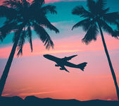 Retro Airliner With Palm Trees — Foto Stock