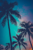 Retro Sunset Hawaii Palm Trees — Stock Photo