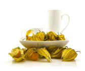 Fruit de physalis sur fond blanc — Photo