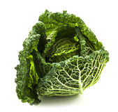 Savoy cabbage isolated on white — Stock Photo