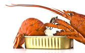 Tinned lobster on white background — Stock Photo