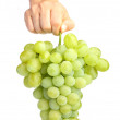 Female hand holding white grapes — Stockfoto