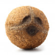 Coconut - Stock Photo