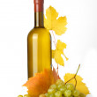 White wine bottle, autumn leaves and grapes - Stockfoto
