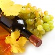 White wine bottle, leaves and grapes on white - Stockfoto