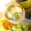White wine in a glass with grapes and bottle - Stockfoto