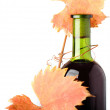 Red wine bottle and grapes autumn leaves - Stock Photo