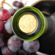 Red wine bottle and grapes macro - Stockfoto
