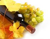 白ワイン ・ ボトル、葉と白ぶどう — ストック写真