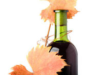 Red wine bottle and grapes autumn leaves — Стоковое фото