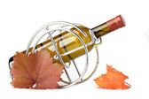 White wine bottle in metallic support and autumn leaves — Stock fotografie
