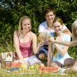 Friends at a picnic — Stock Photo #11284259