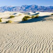Stovepipe Wells sand dunes, Death Valley NP,California,USA — Stock Photo
