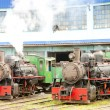 Steam locomotives in depot, Kostolac, Serbia — Foto Stock