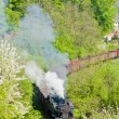 Steam locomotives, Kostolac, Serbia — Stock Photo #13585211