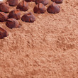 Chocolate truffles in cocoa — Stock Photo #13585428