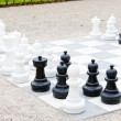 Stock Photo: Chess, Bingen am Rhein, Rhineland-Palatinate, Germany