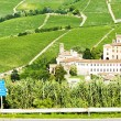 Stock Photo: Barolo, Piedmont, Italy