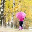 Royalty-Free Stock Photo: Woman wearing rubber boots with umbrella in autumnal nature